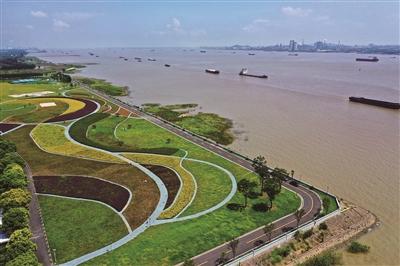 泰州靖江:修复长江生态环境