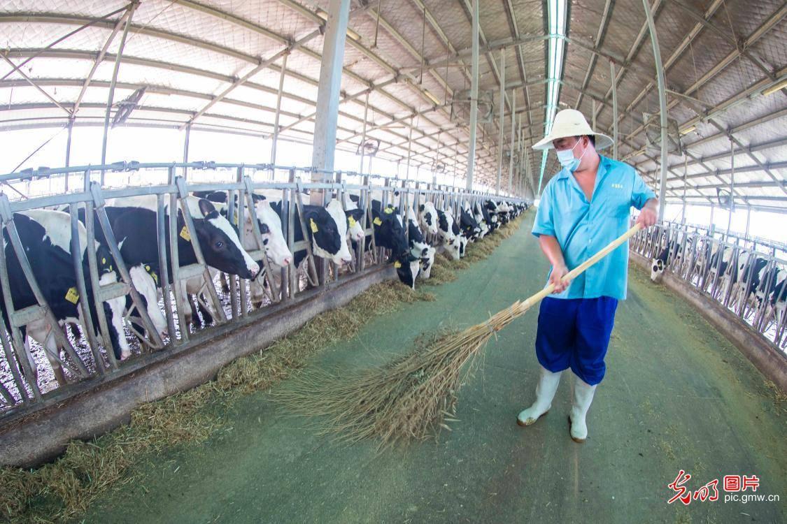 江苏泰州:特色养殖助农增收