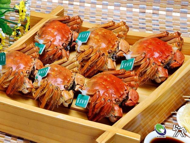 2020溱湖美食节(阳澄湖)推广活动邀您来尝鲜!